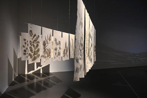 Instal·lació Foresta Nascosta, 2021. ©Marco Ranieri. Fotografia slowphotos.es.