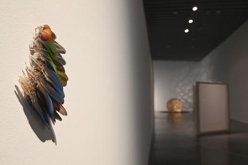 Reconstruyendo aves, 2017. ©Anna Talens. Fotografia slowphotos.es