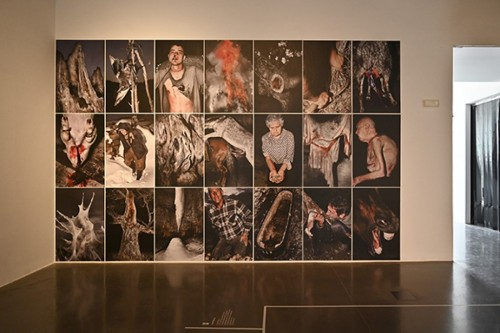 Vista general de la selecció de la serie fotogràfica Nemini Parco, 2011-2017. ©Jesús Monterde. Fotografía slowphotos.es.